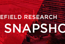 Research Snapshots